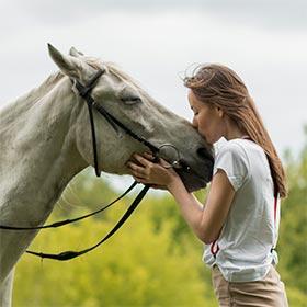 Pferdefreunde Geschenke