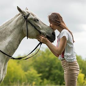 Pferde Geschenke