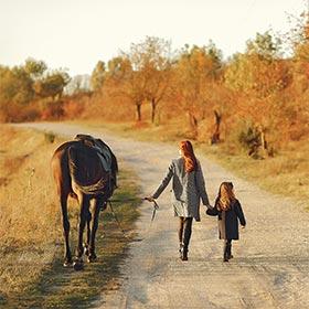 Pferde Fee Geschenke